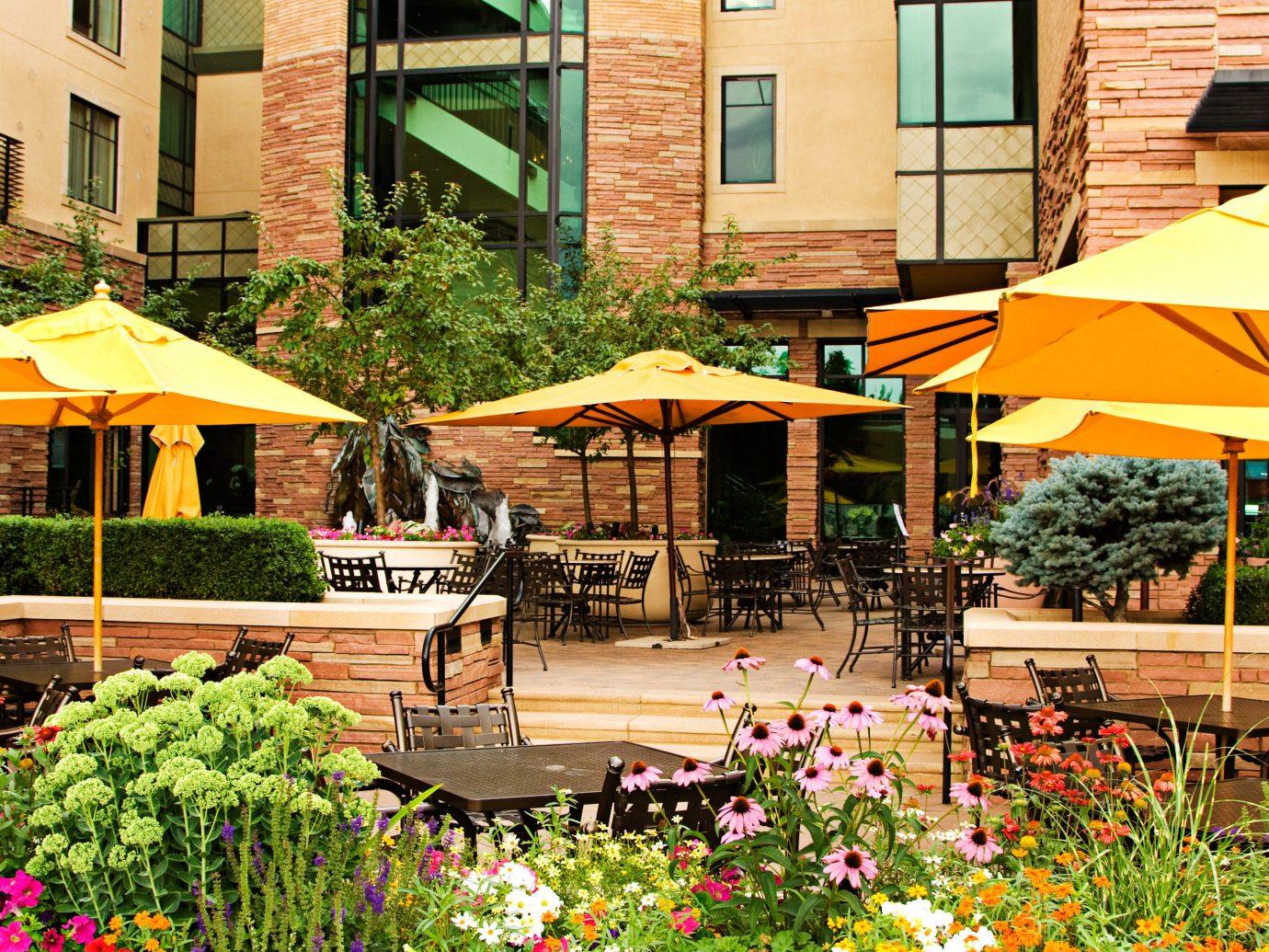 Classic Elegant Exterior Hotels Patio Resort Spa tree outdoor umbrella neighbourhood flower human settlement residential area Courtyard restaurant backyard Garden plant estate colorful area