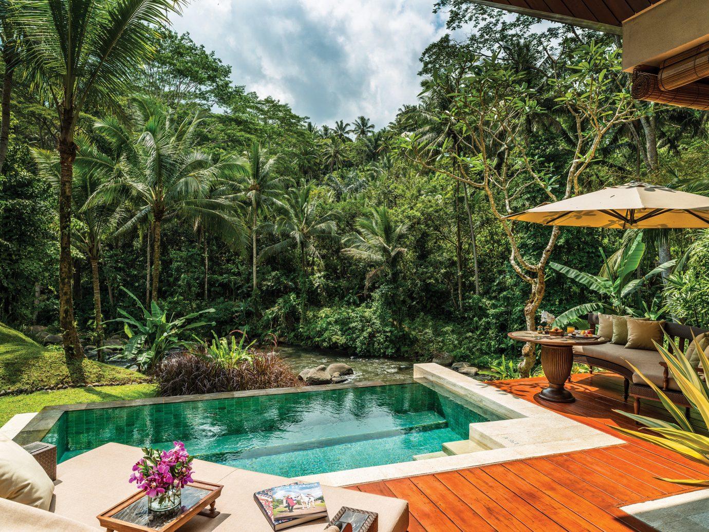 Honeymoon Jungle Luxury Offbeat Pool Romance Trip Ideas tree table outdoor swimming pool property Resort backyard estate Villa eco hotel Garden colorful furniture