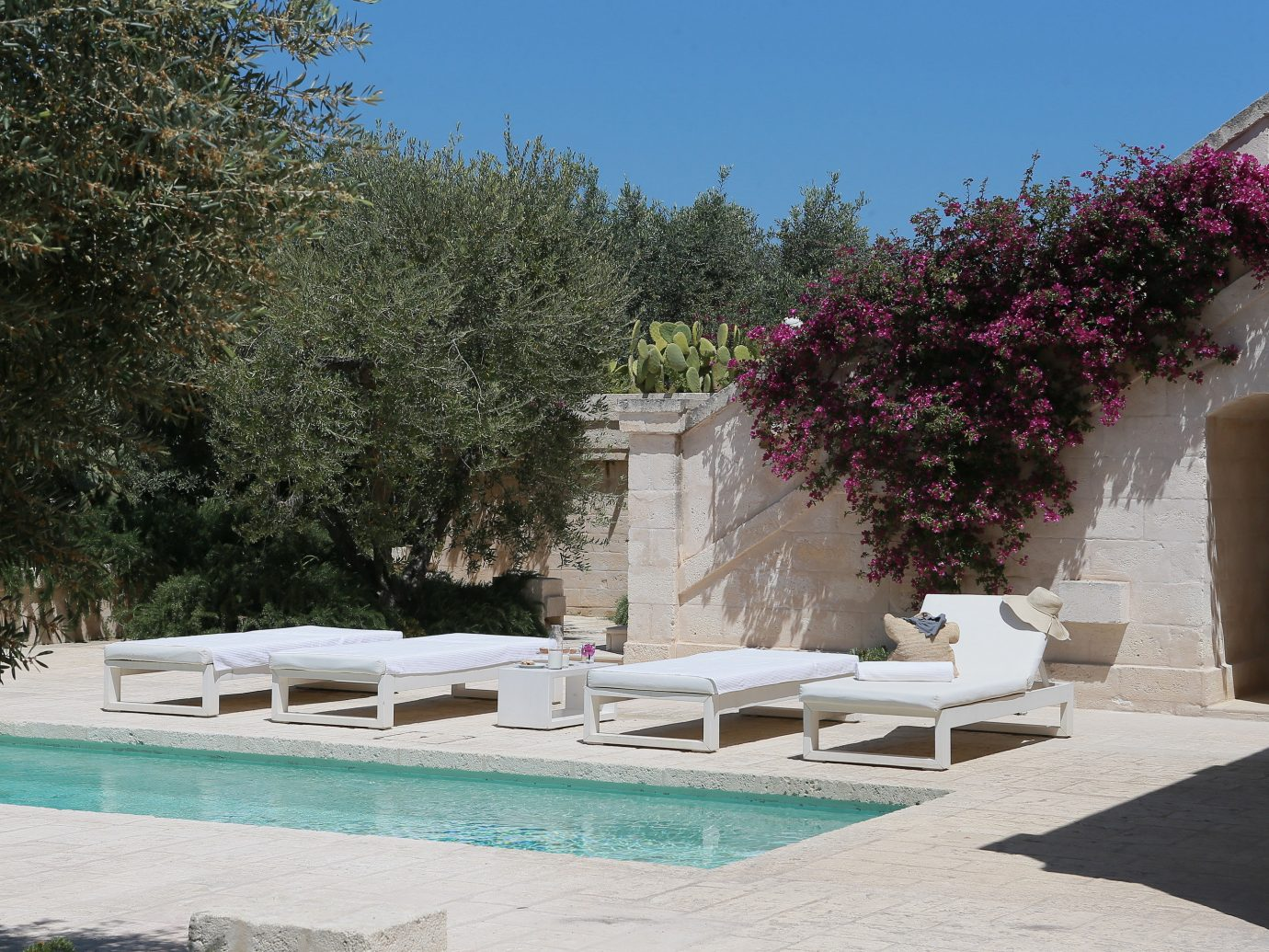 tree outdoor property swimming pool estate house backyard Villa Courtyard home yard Garden hacienda