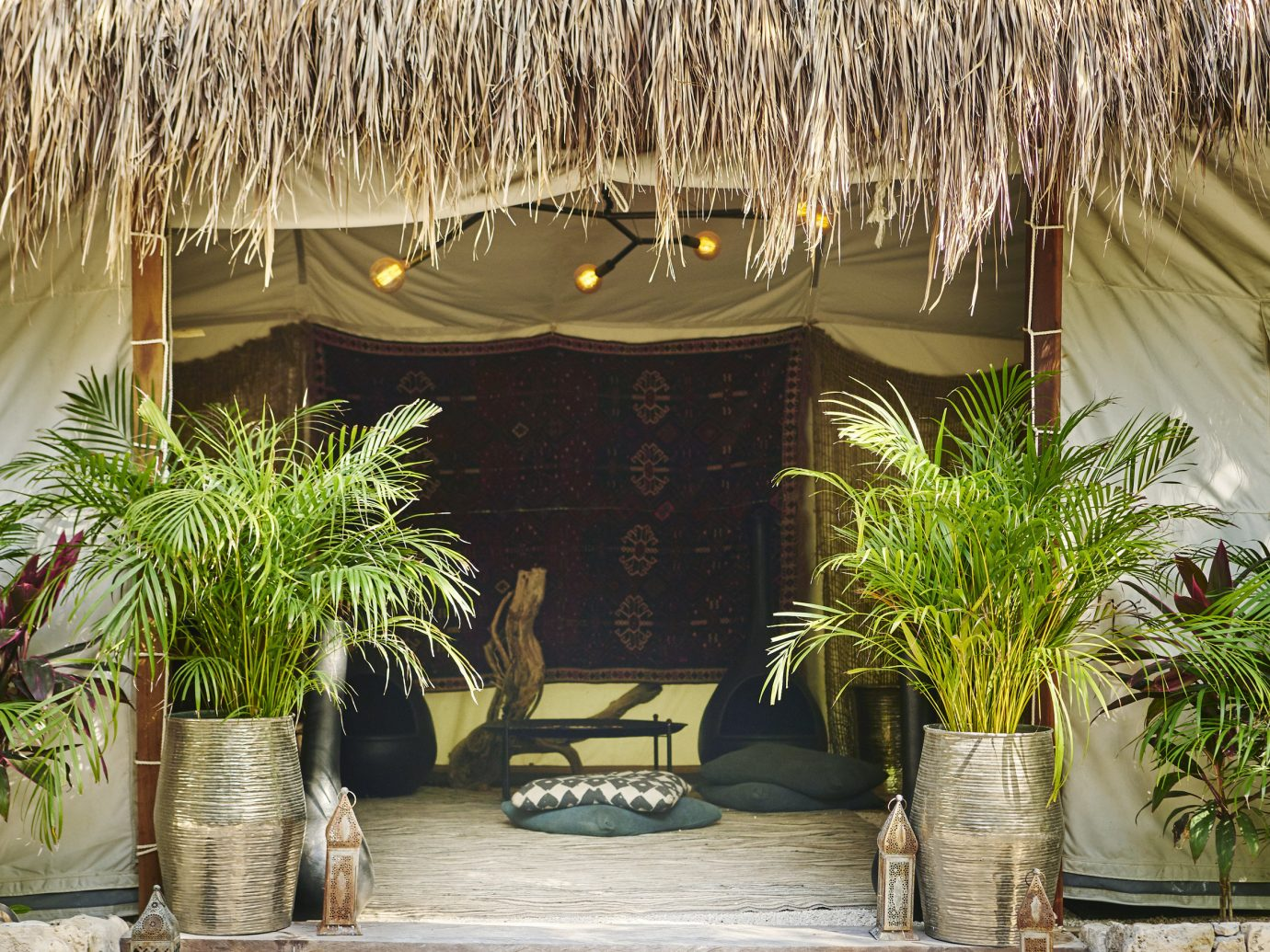 Boutique Hotels Hotels Mexico Tulum tree outdoor plant arecales palm tree outdoor structure home Resort house table window hacienda gazebo roof