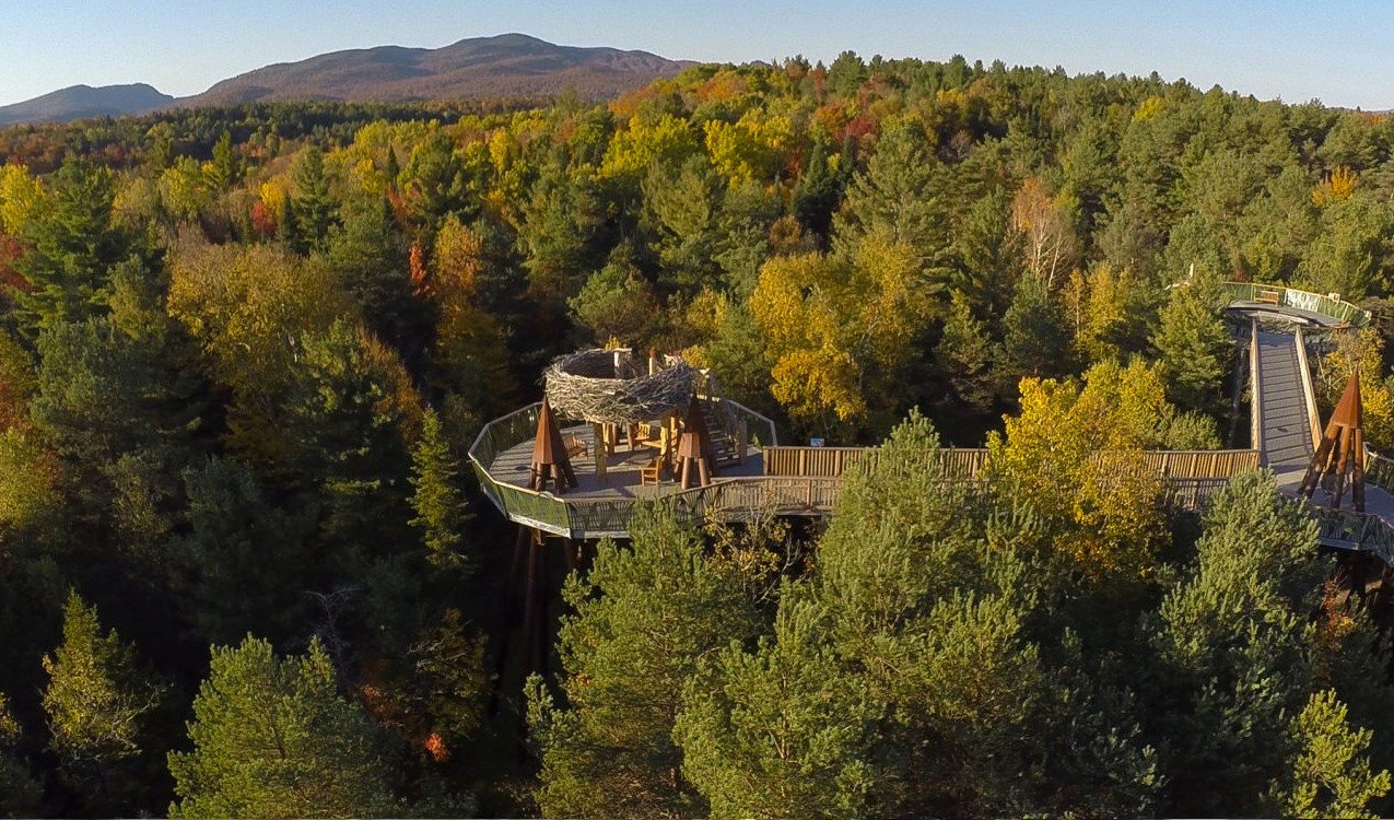 Boutique Hotels Hotels Outdoors + Adventure Trip Ideas Weekend Getaways tree outdoor sky Nature leaf wilderness temperate broadleaf and mixed forest autumn mountain biome hill plant landscape aerial photography Forest national park Village temperate coniferous forest estate wooded lush hillside surrounded