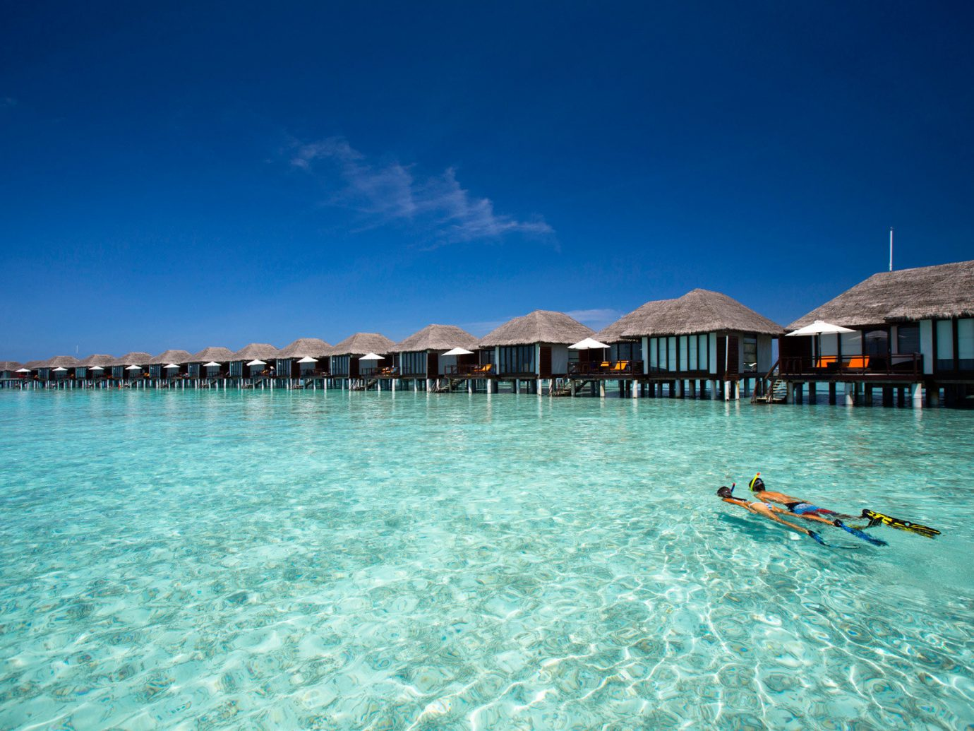 People swimming in front of bungalows at Velassaru Maldives
