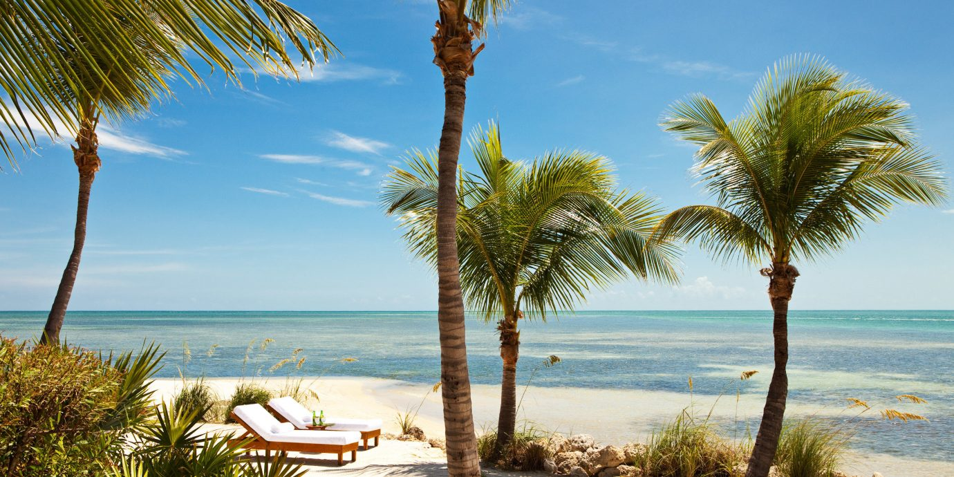 Beach Beachfront Hotels Island Outdoors Resort Romance Romantic Scenic views Secret Getaways Trip Ideas Waterfront tree outdoor palm sky water plant Ocean body of water shore caribbean palm family vacation Sea Coast sandy lined arecales woody plant tropics bay shade sand cape Lagoon