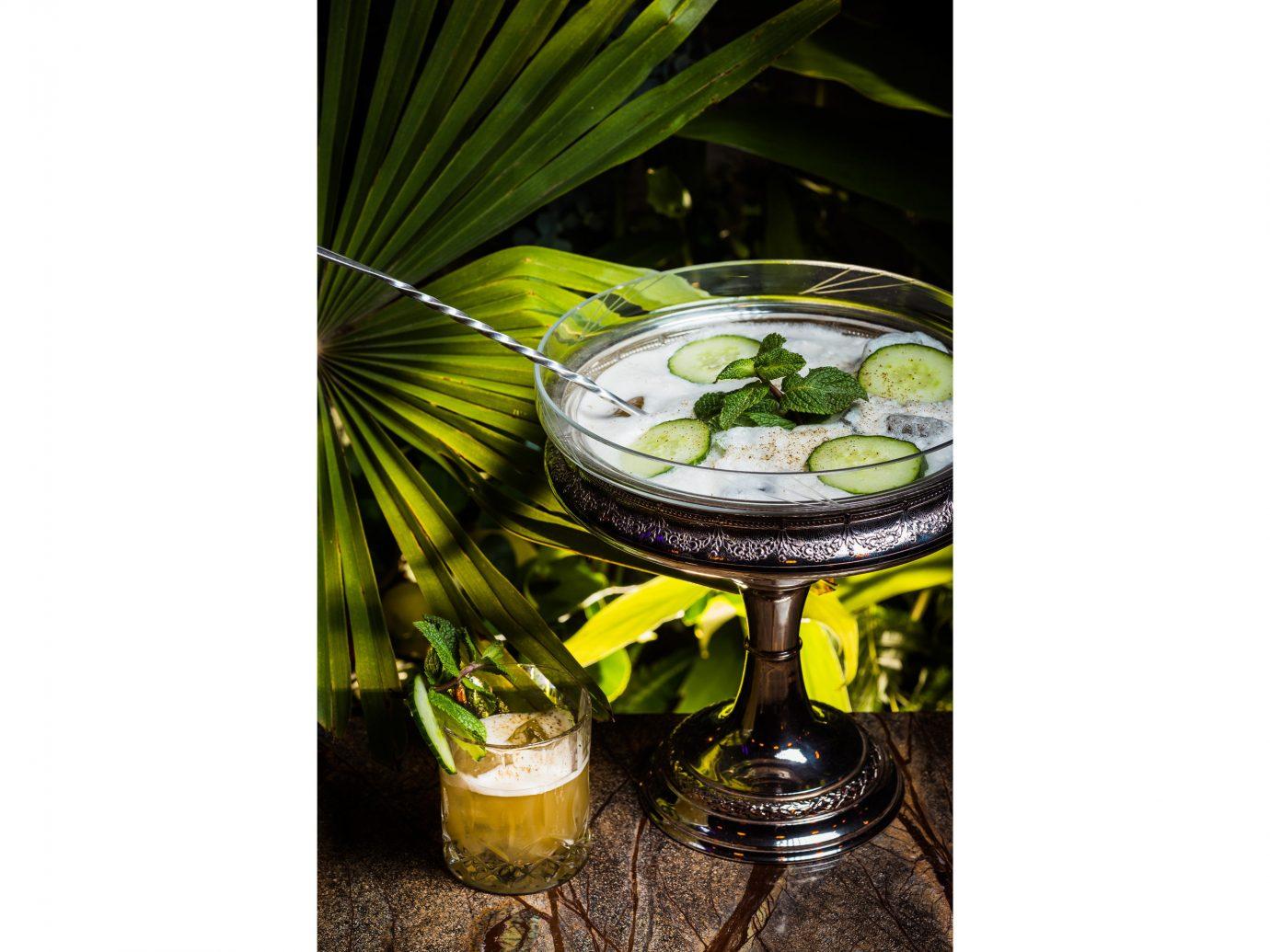 Food + Drink Luxury Travel News Style + Design Trip Ideas plant tableware Drink flowerpot drinkware