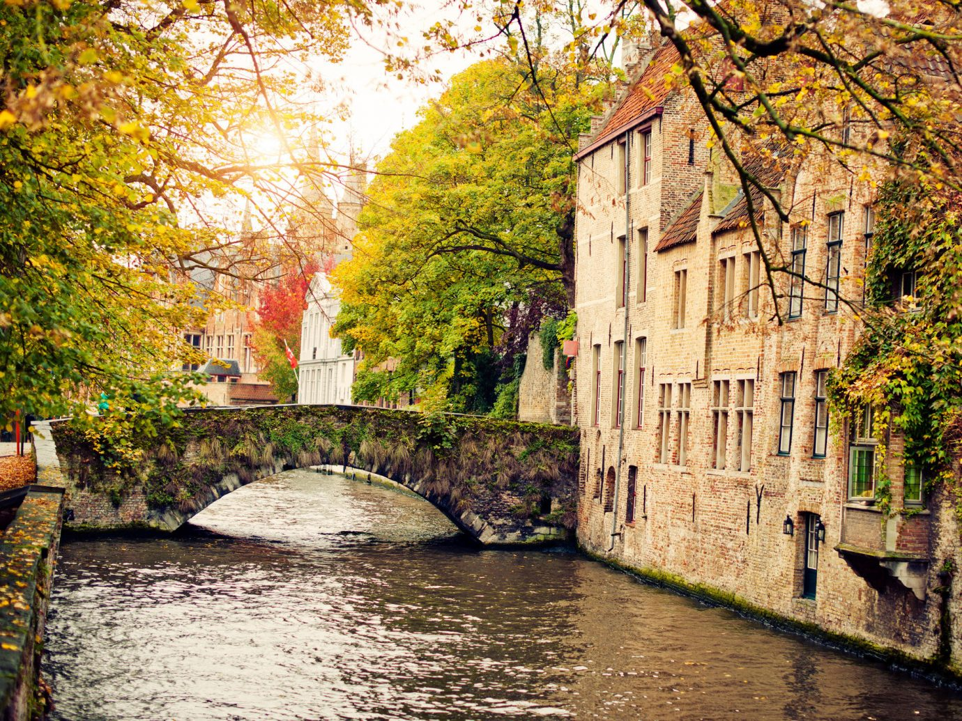 Trip Ideas tree outdoor water Canal waterway Town River autumn season leaf moat rural area flower Village reflection ditch surrounded stone wooded