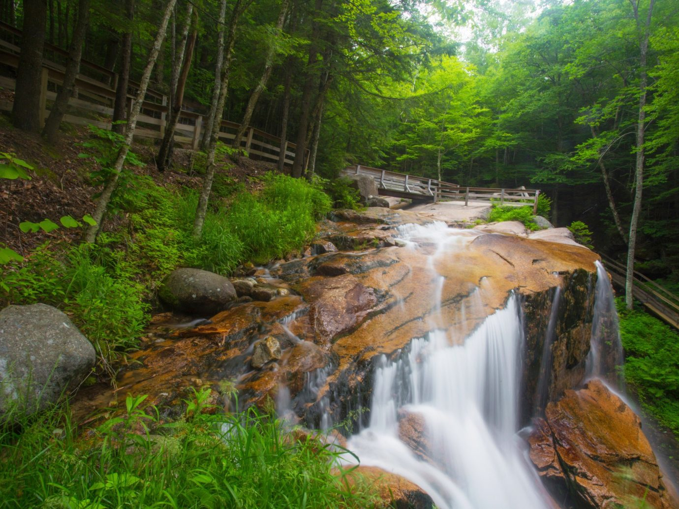 Trip Ideas tree Nature grass outdoor water Waterfall habitat creek body of water stream watercourse River water feature Forest woodland rainforest autumn Jungle wooded surrounded