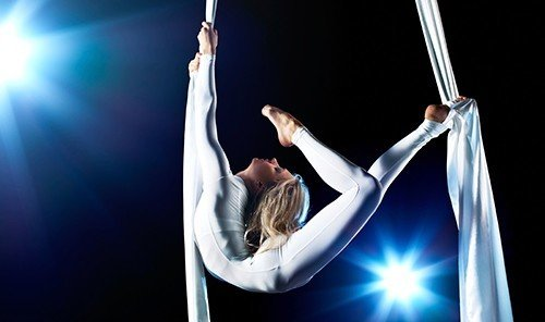 Budget aerialist performing arts performance person Entertainment dance performance art acrobatics sports pole dance event modern dance rings concert dance arm