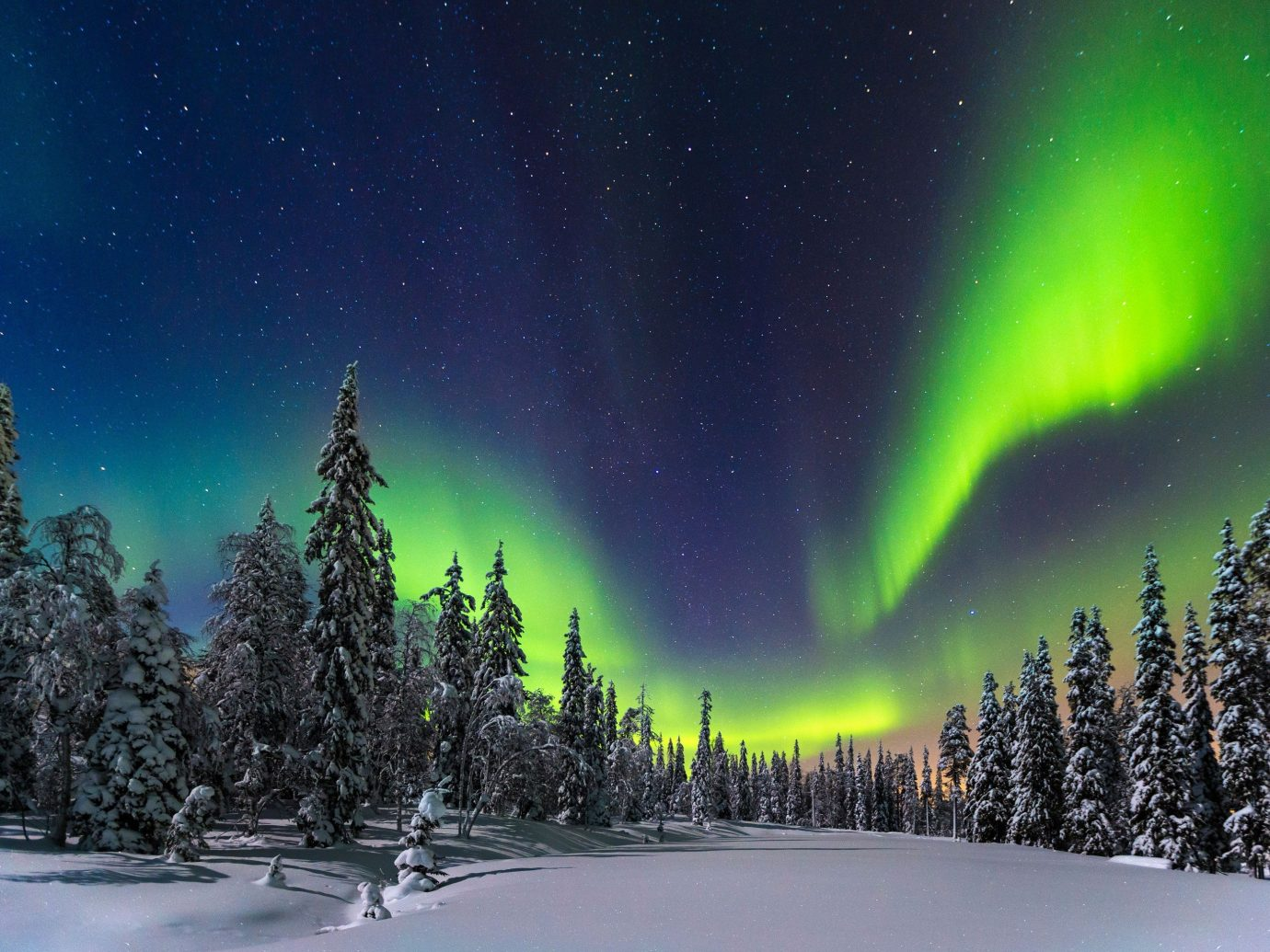 Trip Ideas tree outdoor snow aurora Nature atmosphere surrounded Night Sky