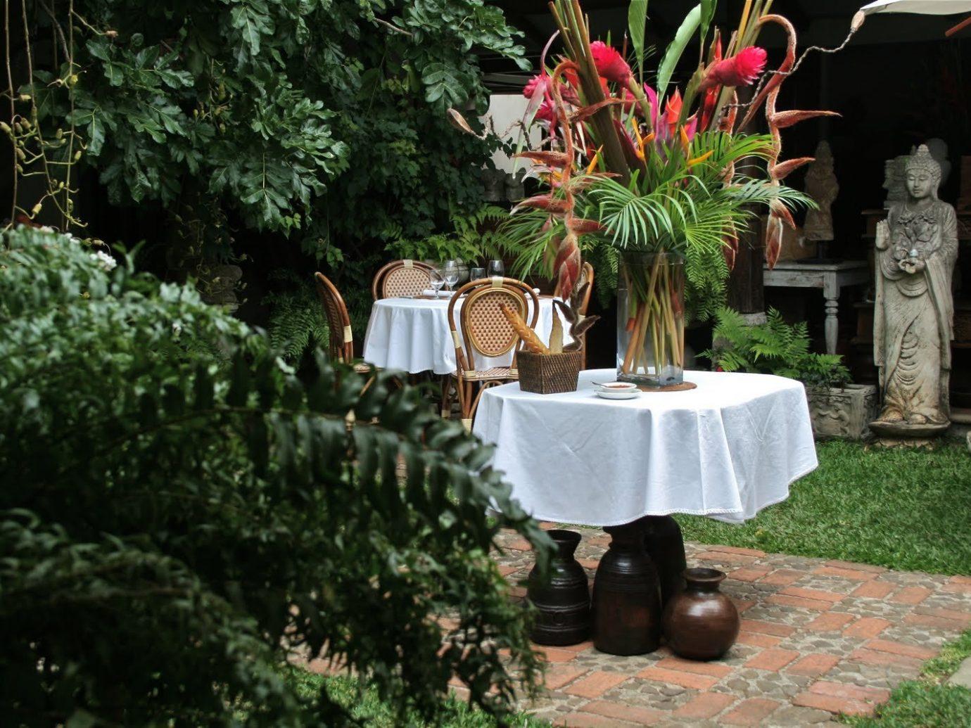 Food + Drink Trip Ideas tree Garden outdoor plant flora yard flowerpot backyard flower grass outdoor structure lawn landscaping shrub arecales houseplant furniture