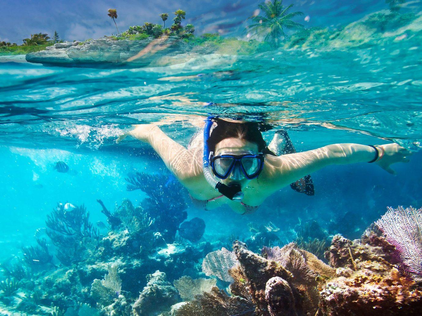 Trip Ideas water Sport swimming outdoor water sport marine biology sports Sea underwater reef coral reef Ocean biology snorkeling outdoor recreation diving recreation Scuba Diving