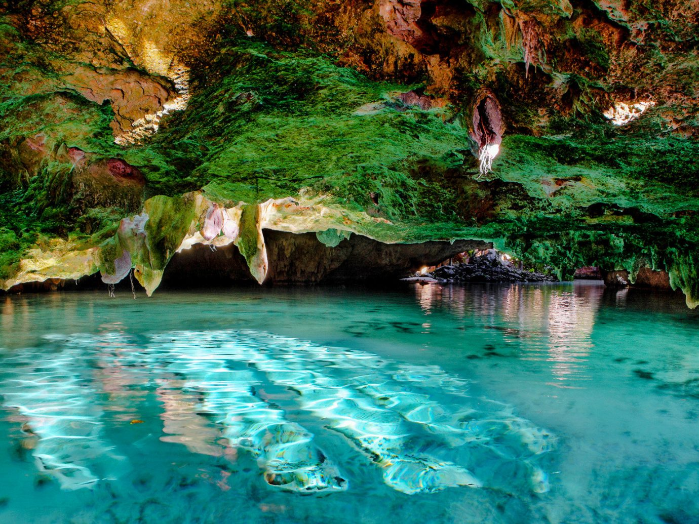 Hotels Mexico Travel Tips Trip Ideas Weekend Getaways water Nature green body of water outdoor vegetation nature reserve watercourse formation fluvial landforms of streams reflection coastal and oceanic landforms stream sea cave Sea rock Lagoon swimming pool water resources underground lake water feature landscape tree mineral spring tropics pond swimming cave surrounded