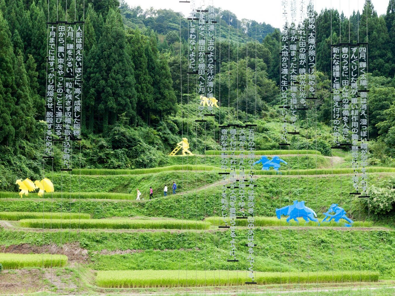 Arts + Culture tree grass outdoor habitat green pasture ecosystem natural environment meadow paddy field field rural area Forest woodland Garden flower landscape pond agriculture lawn Farm
