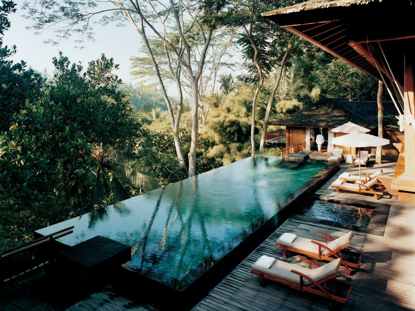 Style + Design tree outdoor leisure swimming pool estate backyard reflection Resort Boat several dock