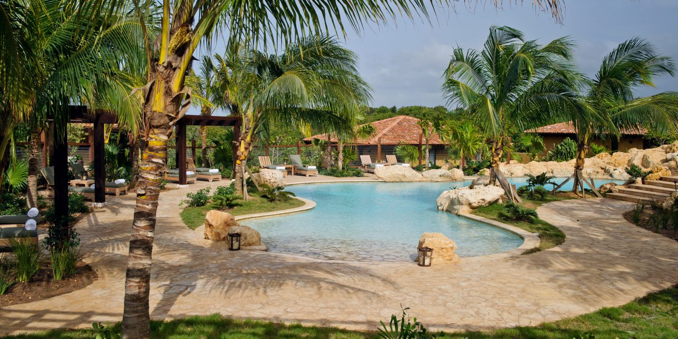 Hotels Lounge Luxury Pool Scenic views tree outdoor palm water plant leisure swimming pool Resort estate vacation arecales tropics palm family Jungle lined shade shore surrounded