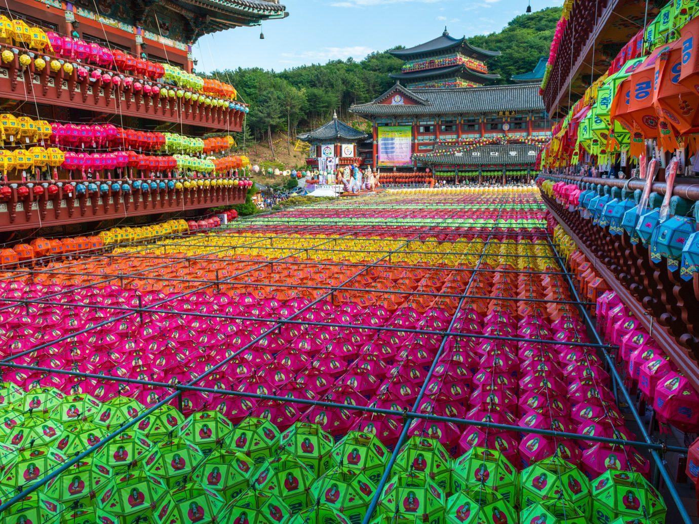Trip Ideas temple plant leisure festival shrine flower