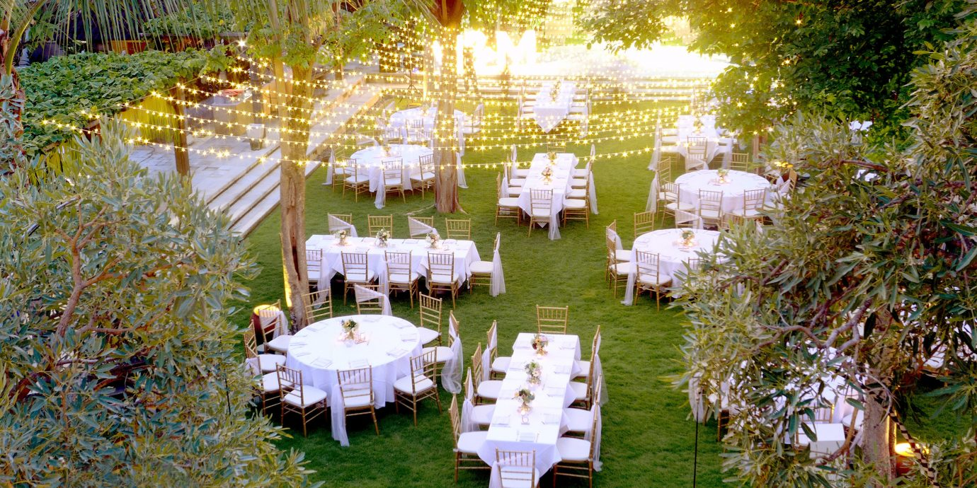 Trip Ideas tree grass outdoor wedding ceremony flower aisle Nature wedding reception white flower arranging meal floristry centrepiece Party backyard floral design