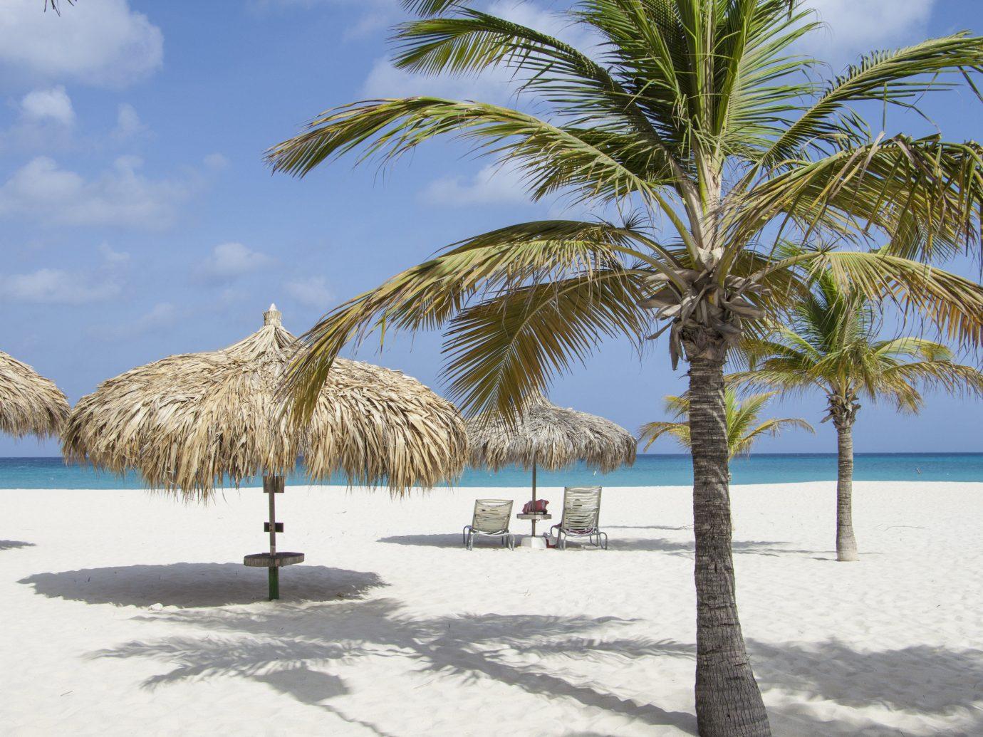 Aruba Hotels outdoor sky tree palm Beach water body of water palm family vacation Sea Ocean arecales plant shore woody plant sandy Coast caribbean tropics Resort Lagoon bay shade lined day
