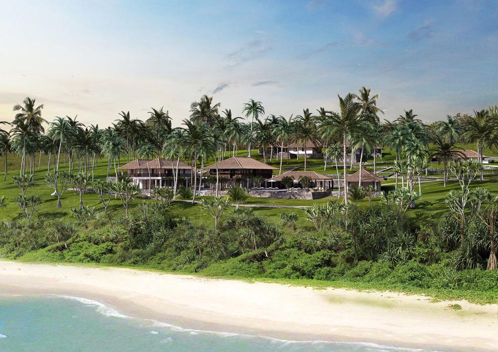 tree grass Beach Resort arecales Coast Sea tropics Lagoon Jungle shore