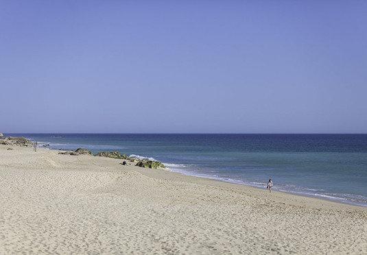sky Beach Nature water shore Sea Coast horizon Ocean sand wind wave cape wave sandy day
