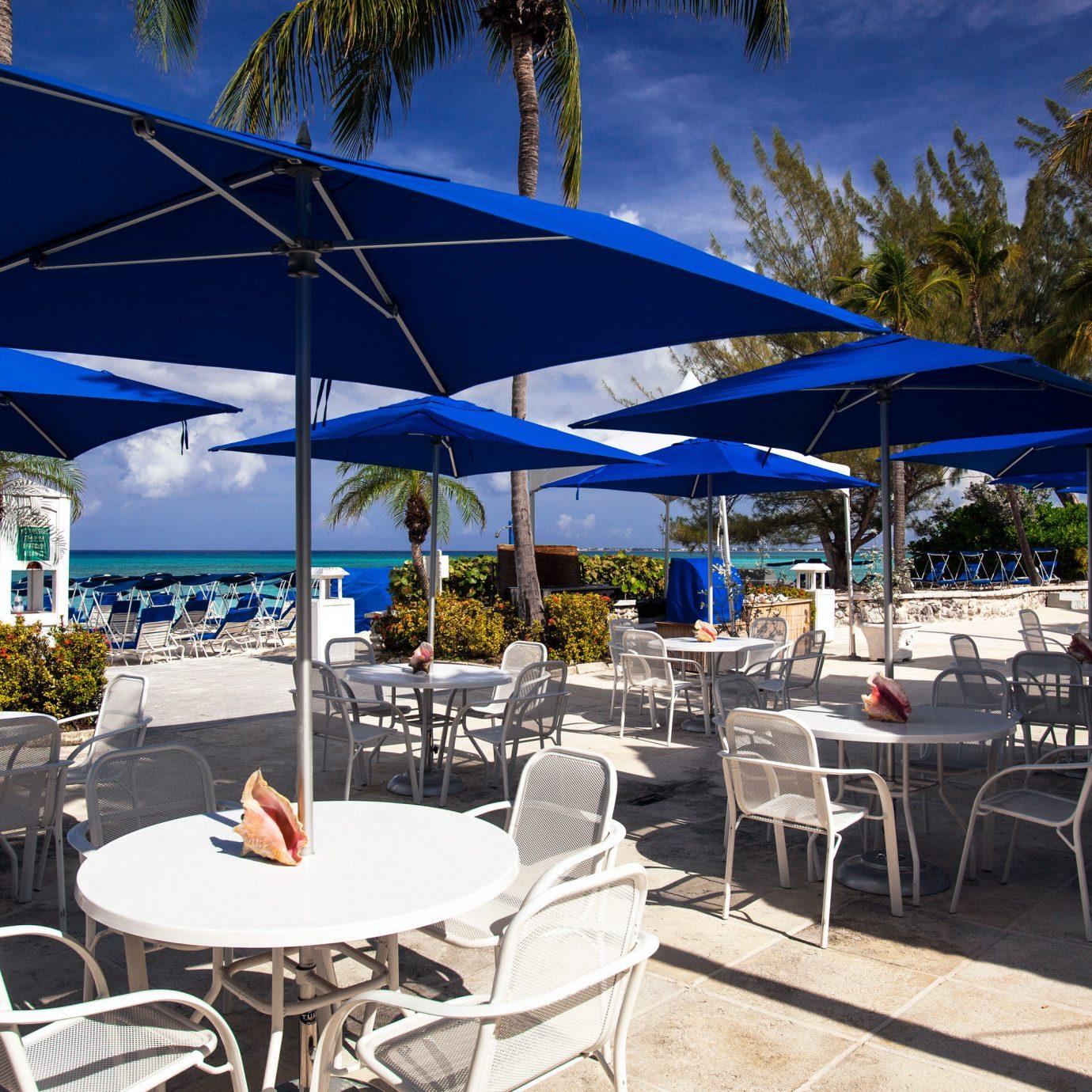 Beach Deck Dining Drink Eat Modern Outdoors tree umbrella chair restaurant Resort vehicle caribbean lawn marina blue set shade day