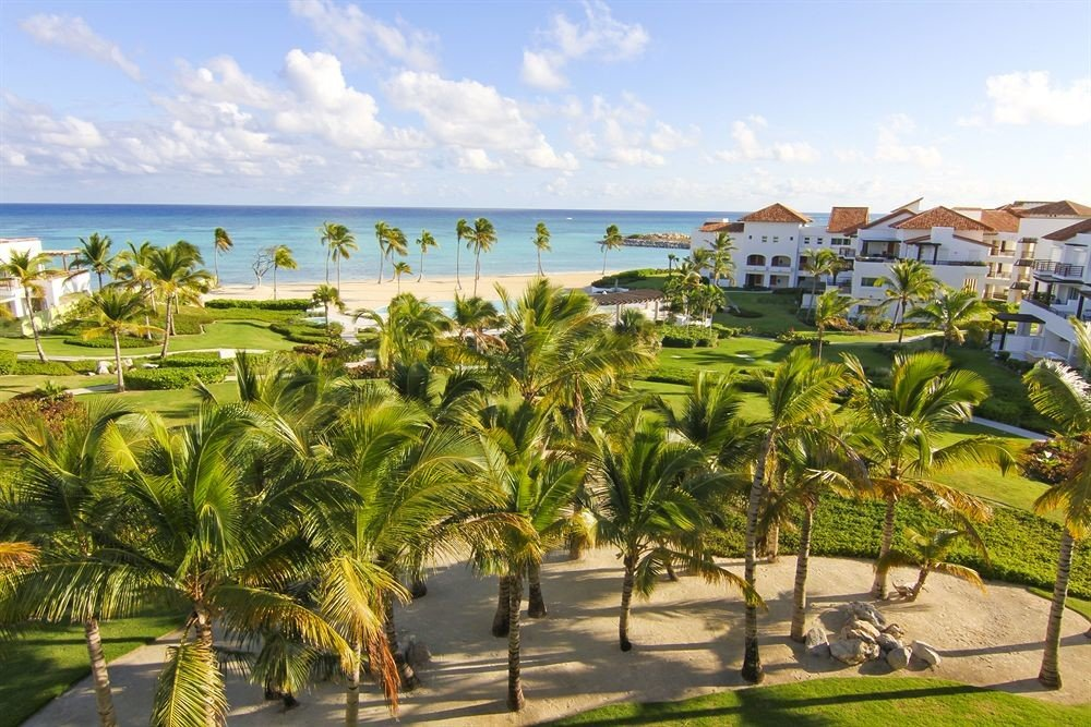 sky Resort property caribbean Nature Beach arecales plant palm tree shore