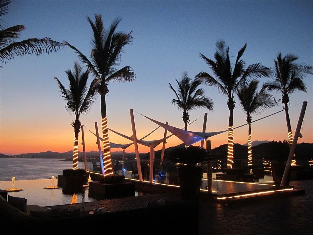 sky tree palm Sunset Ocean Beach arecales Sea dusk Resort evening marina plant palm family dock shore sandy