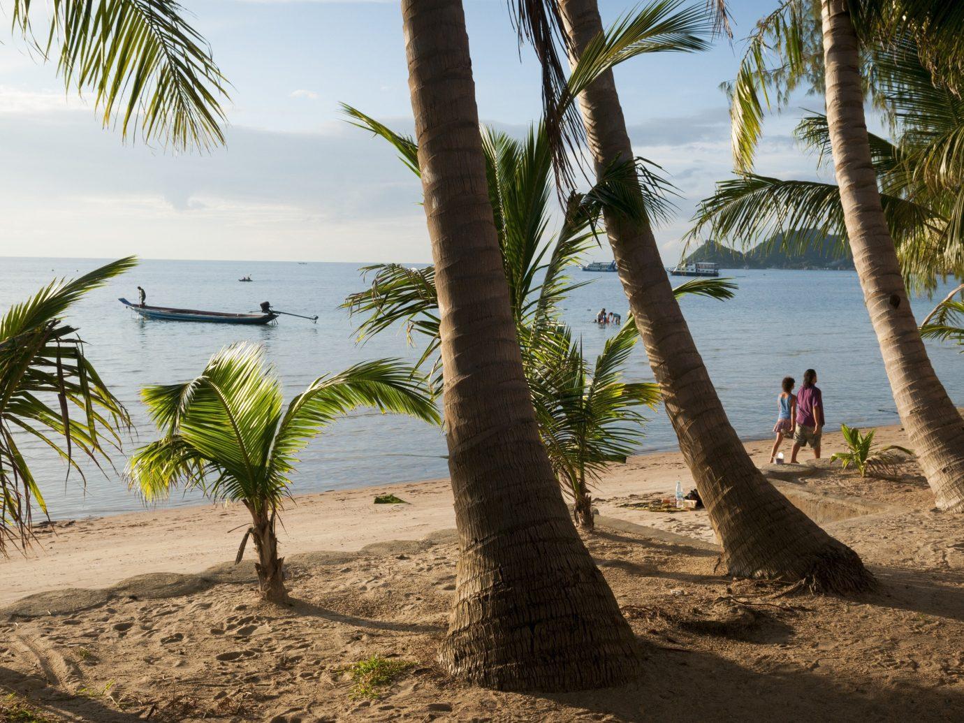 beautiful sandy beach Sairee Beach, Koh Tao