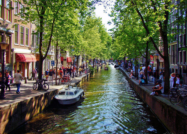 tree water Canal Boat River waterway Town City narrow neighbourhood public space street cityscape lined flower traveling