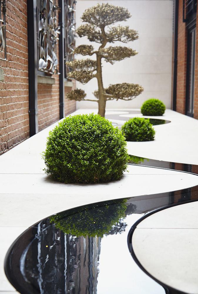tree plant landscape architect flooring branch houseplant flowerpot