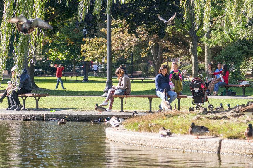 Family Travel Trip Ideas Weekend Getaways tree grass outdoor park boating pond waterway