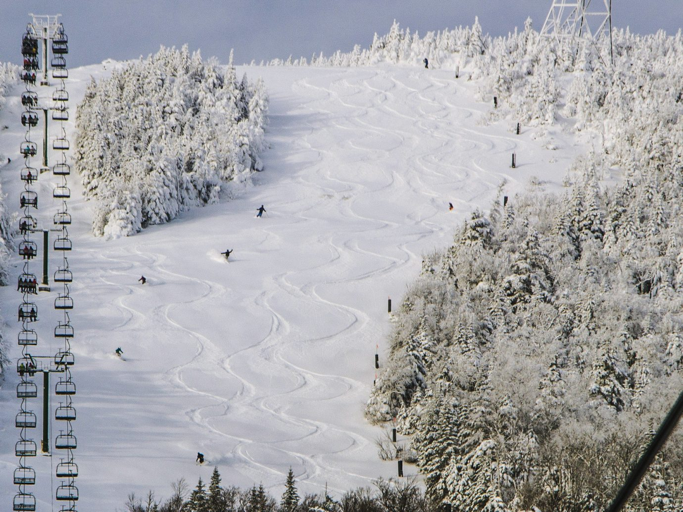 alpine skiing East Coast USA Trip Ideas snow Winter sky freezing frost tree geological phenomenon ice landscape branch