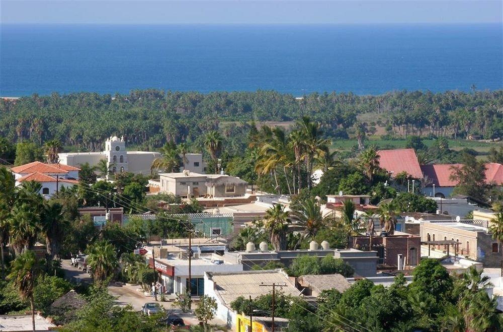 tree mountain Town property residential area neighbourhood Village Resort Coast bird's eye view aerial photography Island