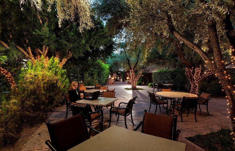 tree chair backyard restaurant Resort Garden Courtyard plant