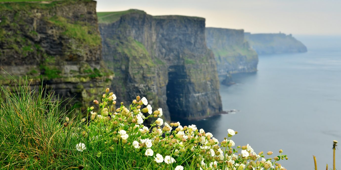 Offbeat sky outdoor water Coast Nature cliff landform geographical feature shore Sea body of water mountain Ocean rock terrain grass flower bay hill landscape fjord cape surrounded
