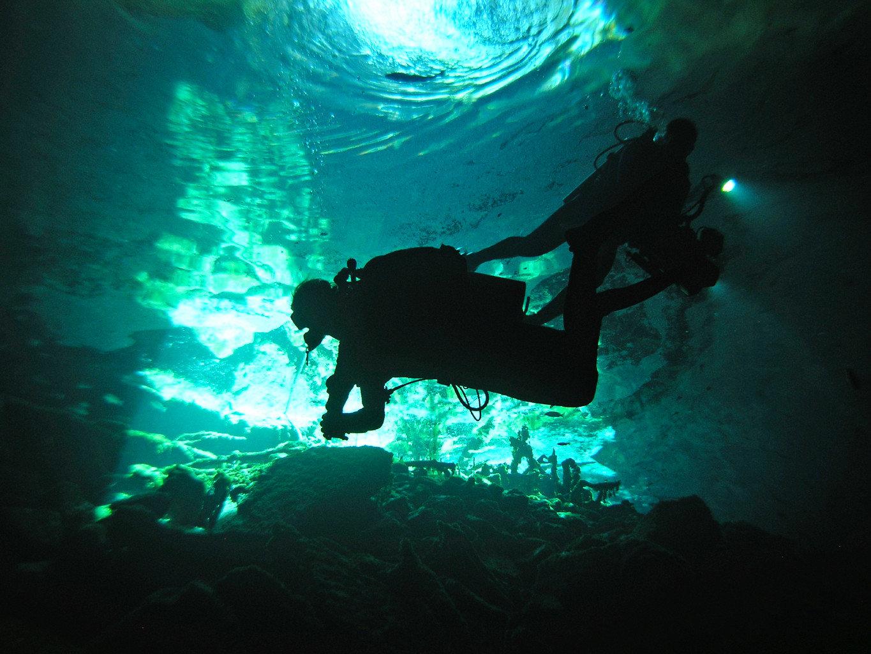 Adventure Outdoor Activities Trip Ideas dark underwater diving marine biology underwater light freediving diving Scuba Diving biology darkness outdoor recreation water sport recreation sports swimming reef ocean floor