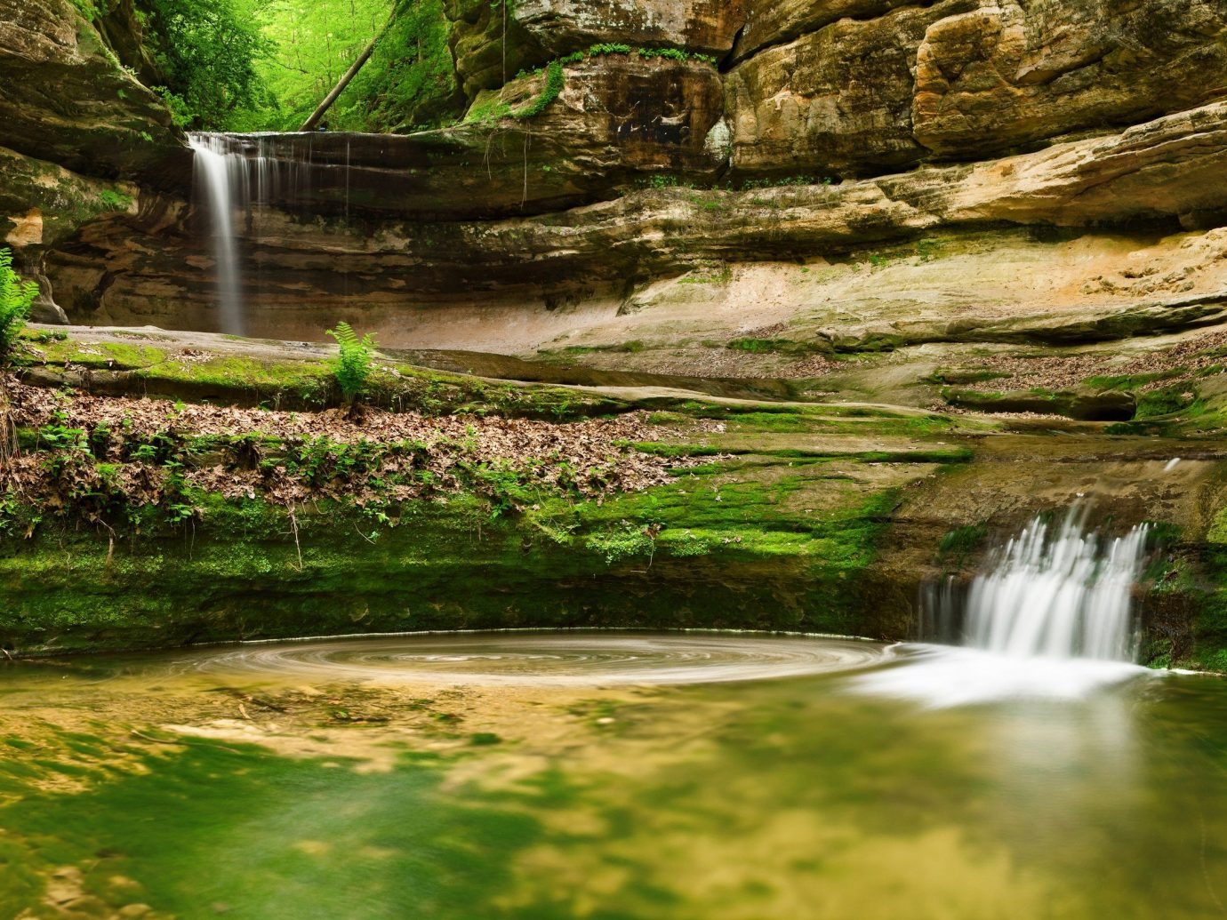 Trip Ideas grass Nature outdoor water Waterfall vegetation body of water green watercourse tree stream water feature rock River valley landscape reflection Jungle flower woodland park rainforest