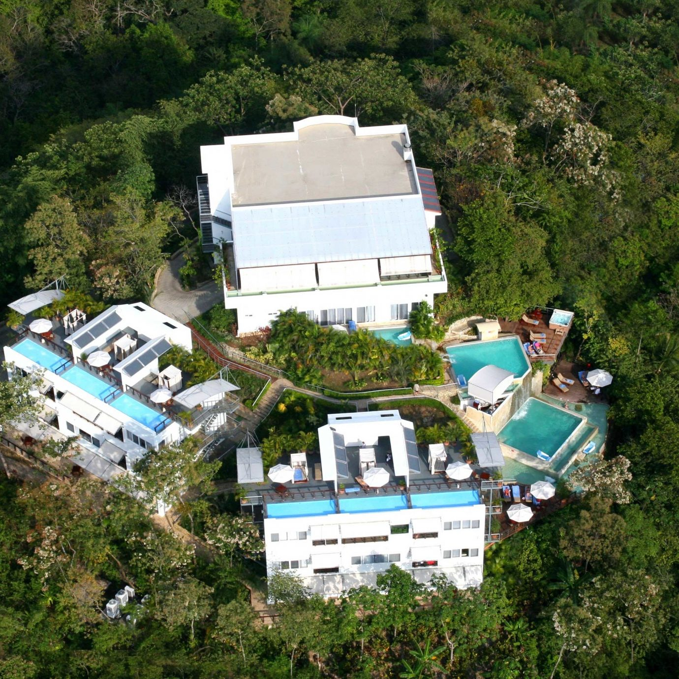 Exterior Grounds Jungle tree geological phenomenon house aerial photography residential area Village cottage trailer
