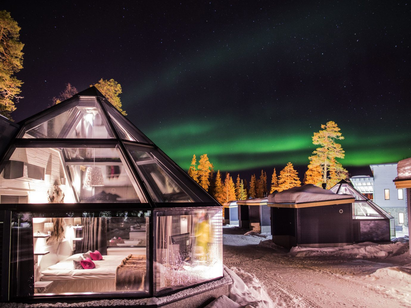 colorful Exterior glass building isolation lights Luxury majestic night night lights northern lights remote serene skylight snow trees Trip Ideas unique Winter house screenshot