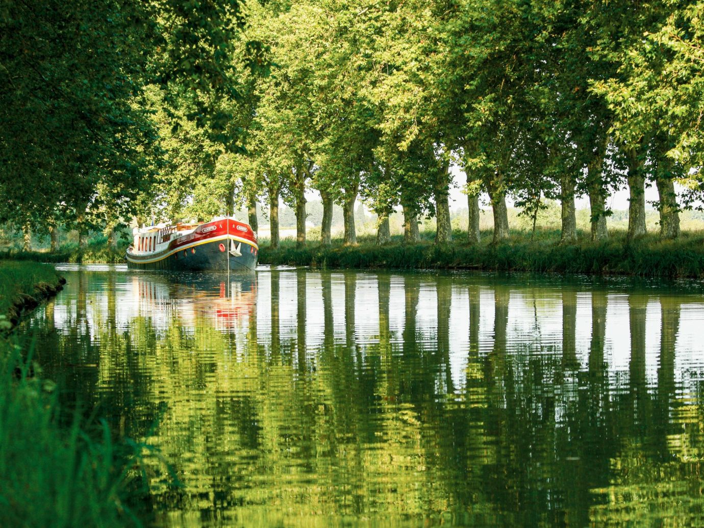 Cruise Travel Luxury Travel tree outdoor water grass reflection waterway Canal Nature body of water green bank leaf River Lake plant pond bayou landscape wetland watercourse floodplain recreation surrounded
