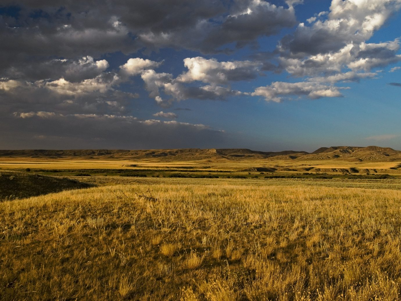 National Parks Outdoors + Adventure Trip Ideas outdoor grass sky field grassland ecosystem prairie plain steppe ecoregion savanna cloud horizon meadow Nature grass family tundra landscape hill shrubland clouds plateau crop sunlight national park pasture meteorological phenomenon computer wallpaper cumulus plant community cloudy