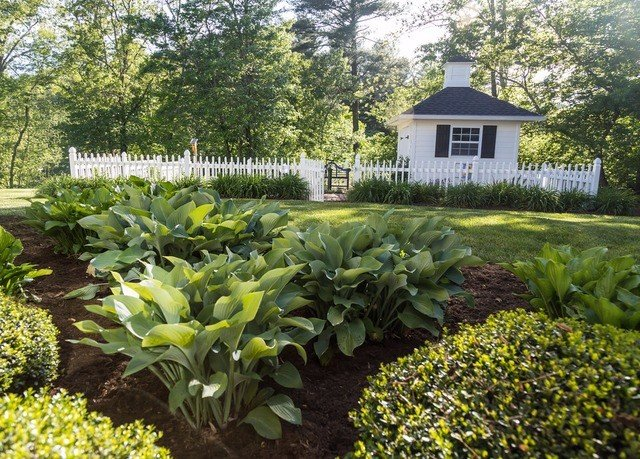 tree plant property Garden botany flower yard backyard green lawn landscape architect shrub cottage home plantation botanical garden garden designer landscaping outdoor structure broccoli vegetable