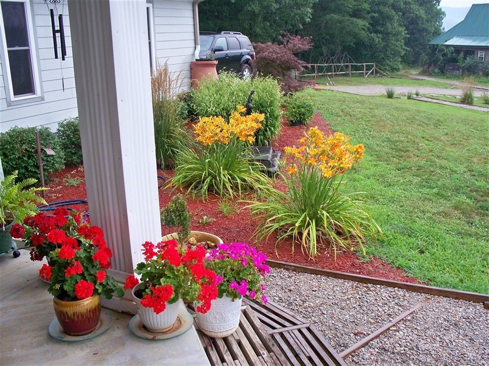 flower grass yard plant Garden backyard lawn walkway landscape shrub landscaping landscape architect porch