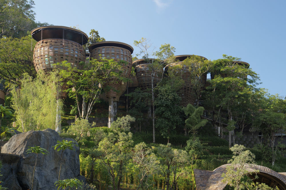 tree ecosystem landmark botany Garden Ruins rock Jungle flower botanical garden plant
