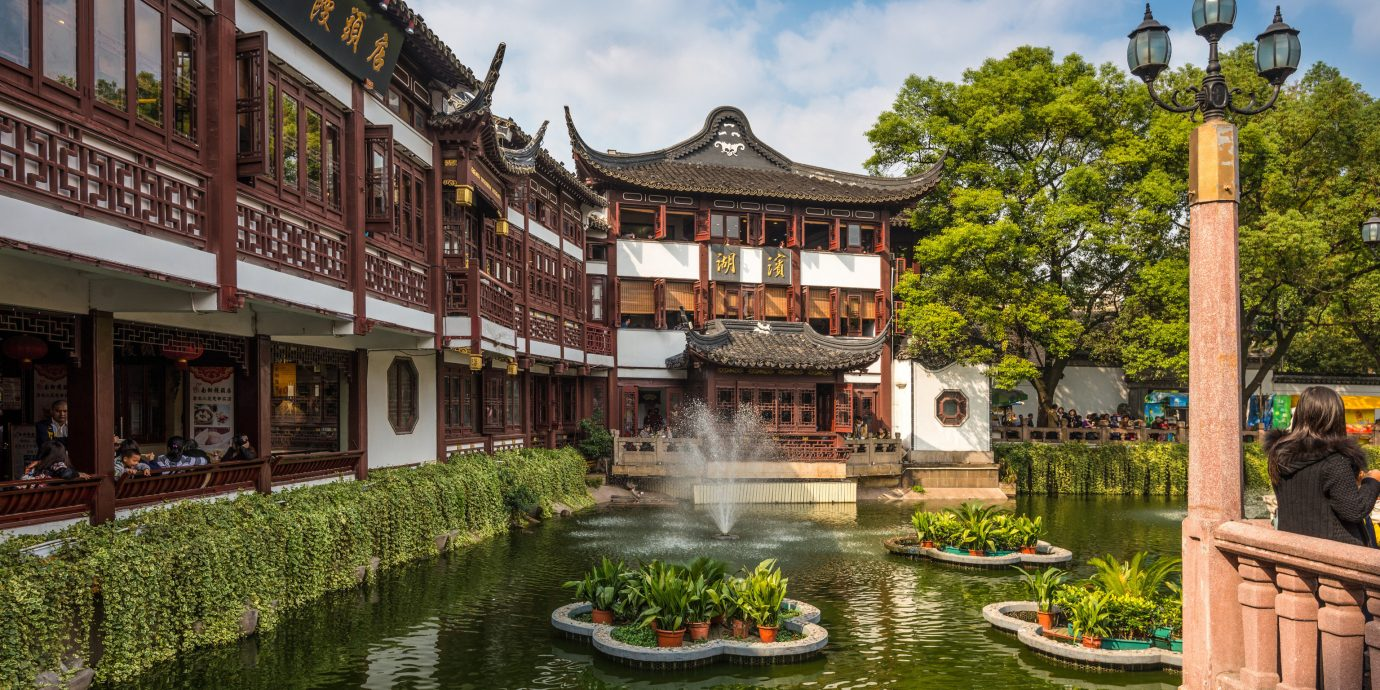 China china rose Shanghai Travel Tips Trip Ideas chinese architecture waterway reflection Town Canal water tourist attraction tree City pagoda real estate tourism plant leisure sky outdoor structure watercourse pond
