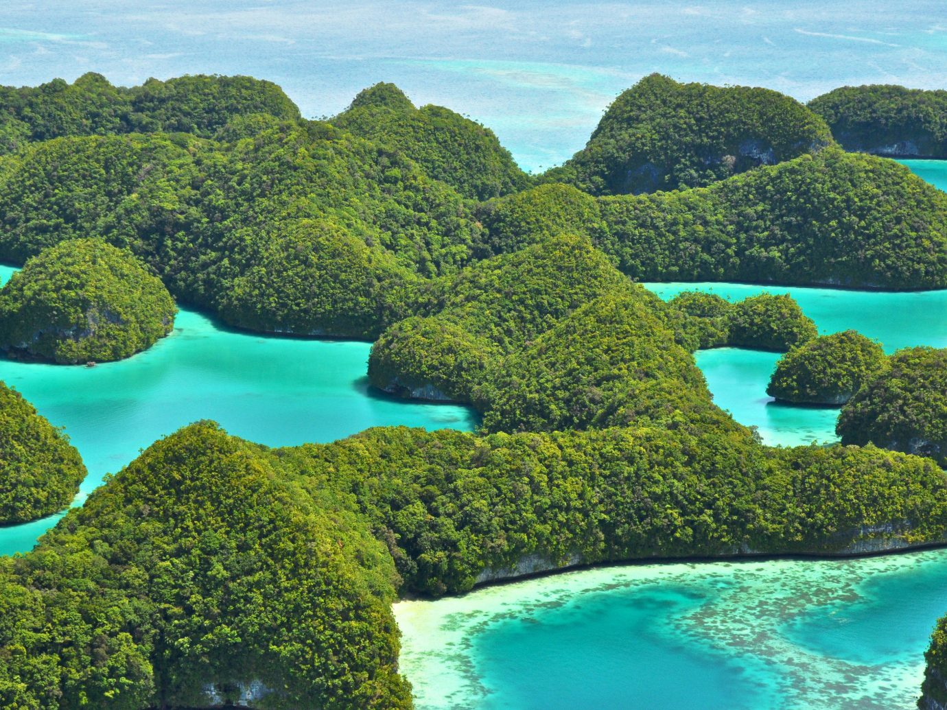 Offbeat water reef umbrella archipelago Nature vegetation outdoor green tree ecosystem Sea islet Coast bay Island Lagoon coral reef tropics aerial photography Jungle Garden colored swimming