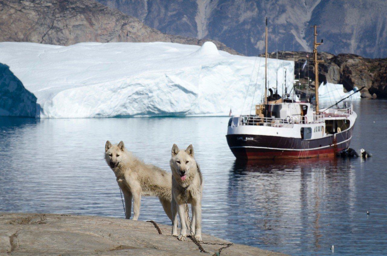 Luxury Travel Trip Ideas water outdoor Dog Boat snow mountain arctic vehicle Sea ice arctic ocean