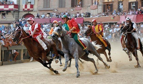 Trip Ideas horse harness outdoor western riding sports western pleasure racing equestrian sport charreada animal sports jockey pack animal rodeo reining