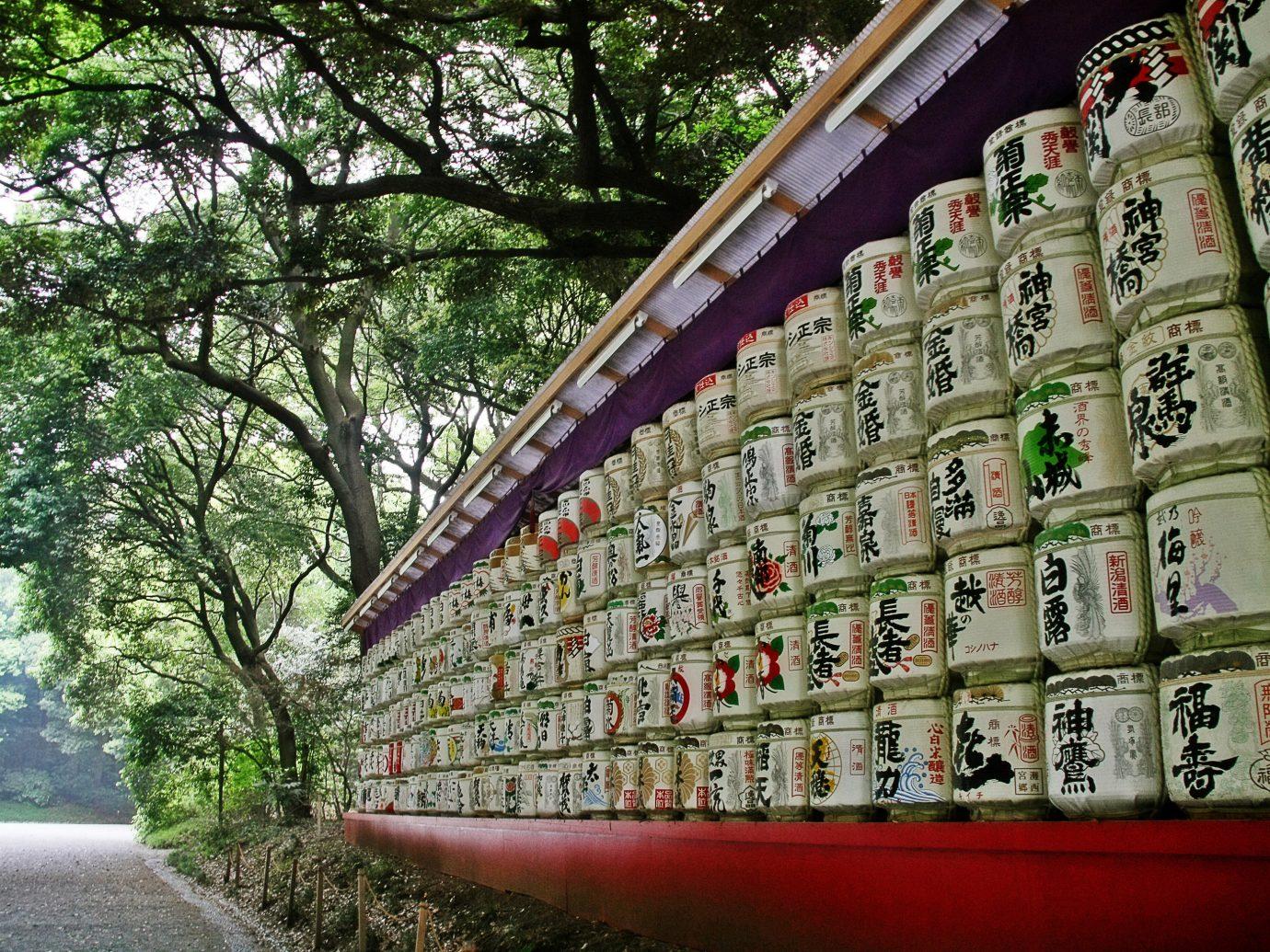 Japan Trip Ideas tree wall grass plant