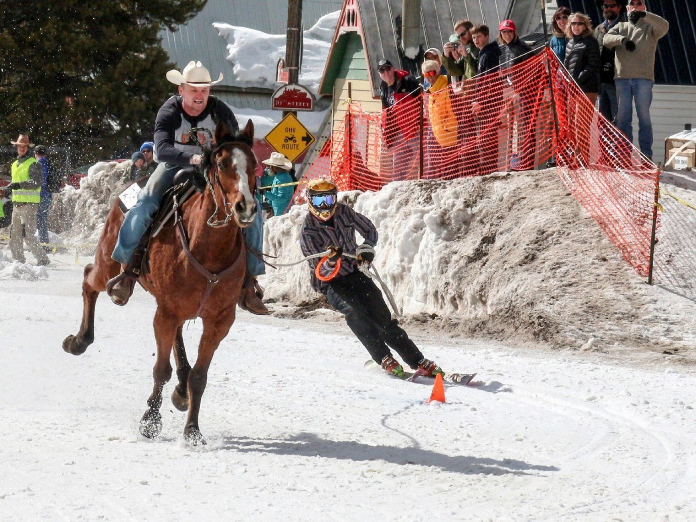 Offbeat Trip Ideas outdoor snow sports animal sports equestrian sport equestrianism tradition racing