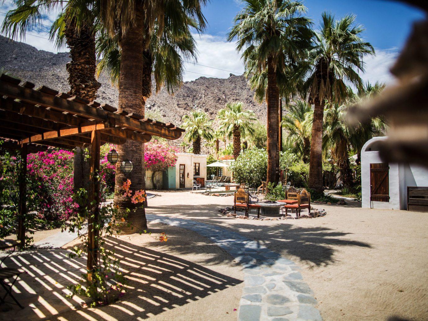 Editors Picks Luxury Travel Trip Ideas tree outdoor estate Resort vacation Courtyard home hacienda arecales mansion Villa backyard Village flower